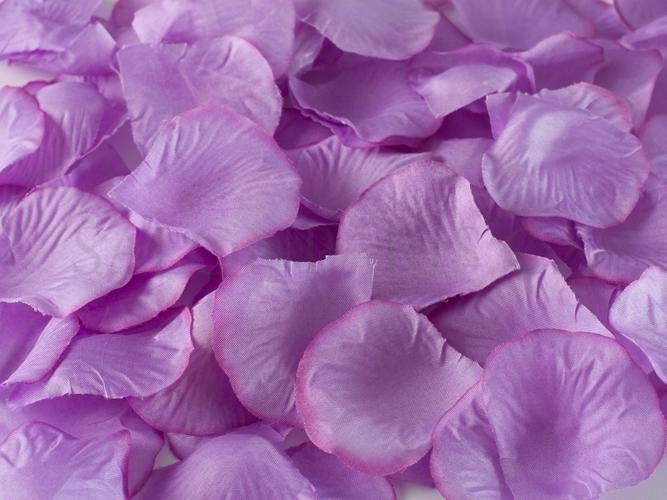 bc51cb214fe Plátky růží violet